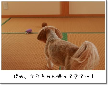 2008_1101_100927AA.jpg