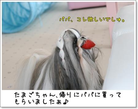 2008_1102_141816AA.jpg