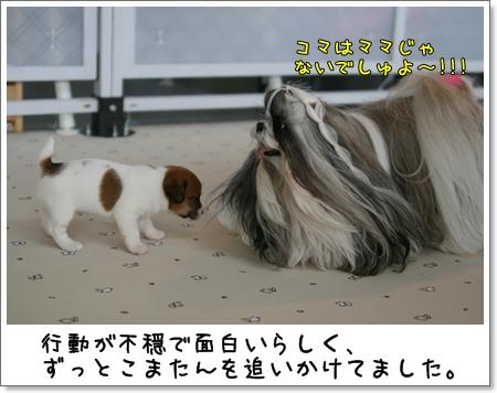 2008_1102_143339AA.jpg