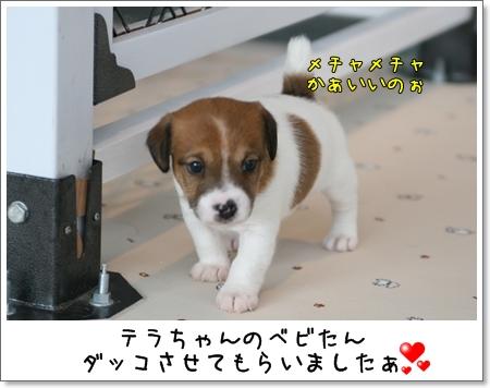 2008_1102_143357AA.jpg