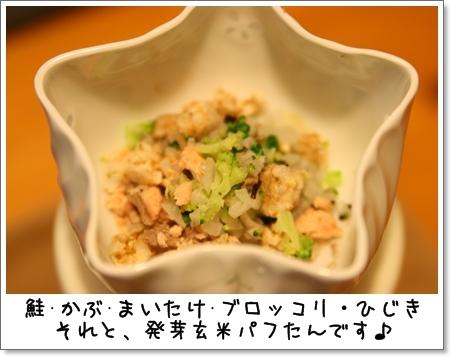 2008_1108_183716AA.jpg
