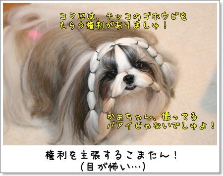 2008_1110_073349AB.jpg