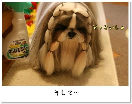 2008_1110_073652AB.jpg