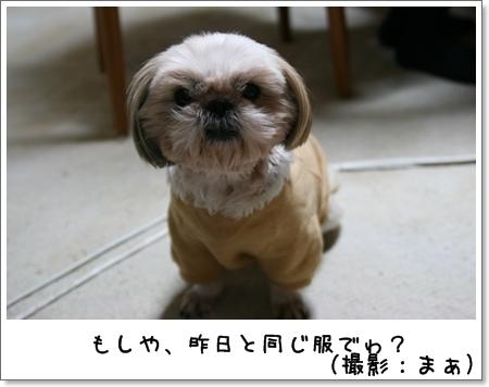 2008_1111_190418AB.jpg