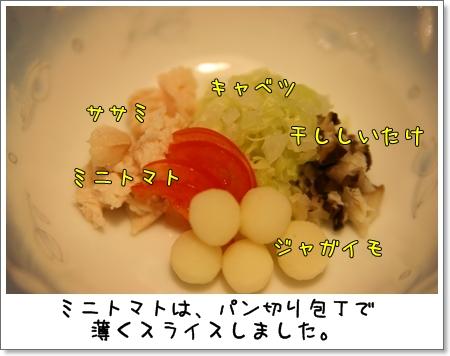 2008_1111_205839AB.jpg