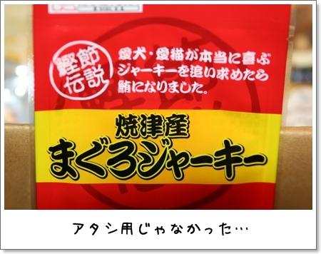 2008_1113_024559AA.jpg