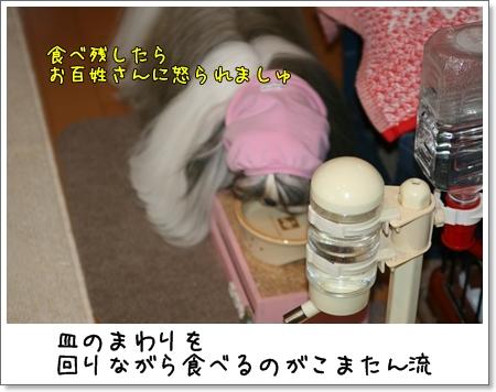 2008_1113_064436AA.jpg