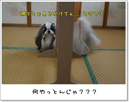 2008_1117_073347AA.jpg