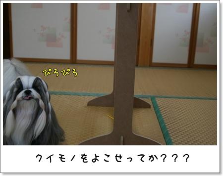 2008_1117_073405AA.jpg