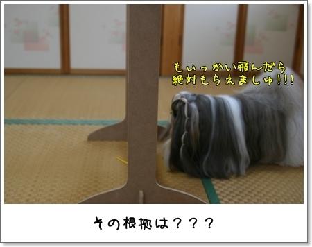 2008_1117_073436AA.jpg