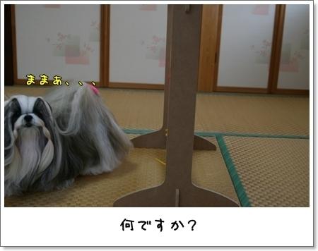 2008_1117_073446AB.jpg