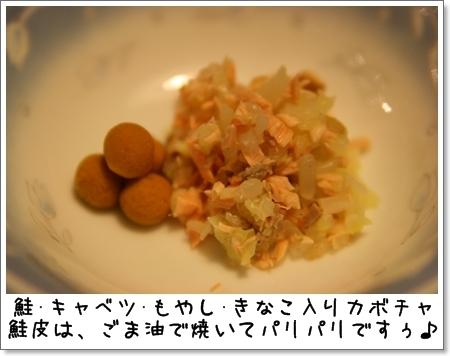 2008_1117_203227AA.jpg