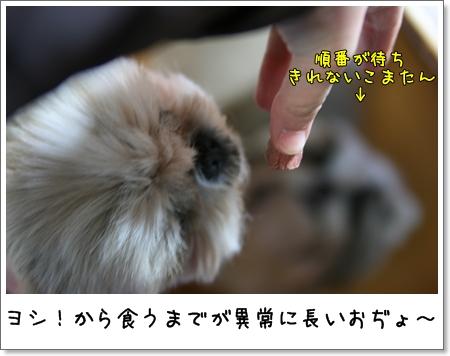 2008_1120_191405AA.jpg