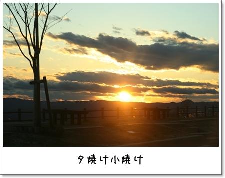 2008_1123_160911AA.jpg