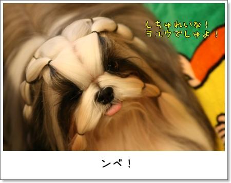 2008_1124_152443AA.jpg