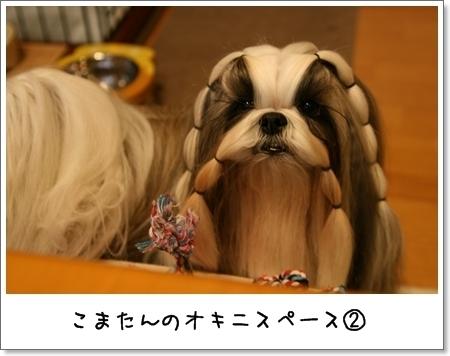 2008_1124_152649AA.jpg