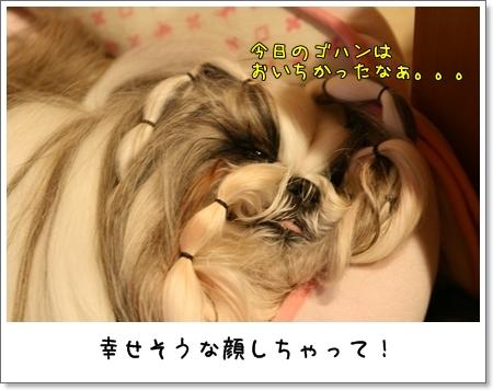 2008_1124_224028AA.jpg