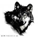 20070706_wolf_b.jpg