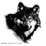 20070706_wolf_d.jpg