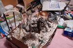 20070728_syogun_b.jpg