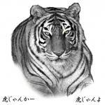 20071015_tiger_b.jpg