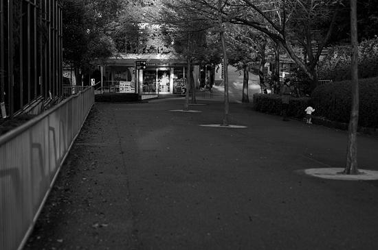 動物園風景-14