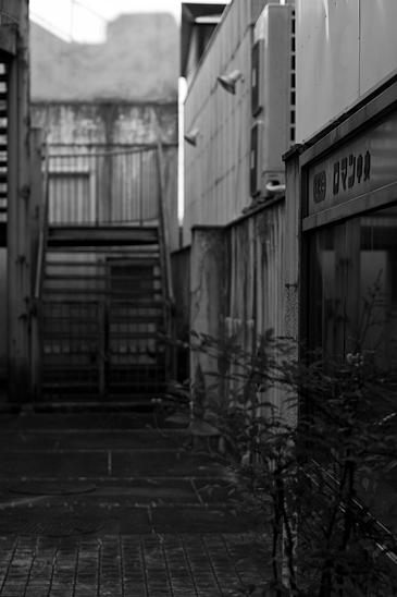 瀬戸モノクロ1-5