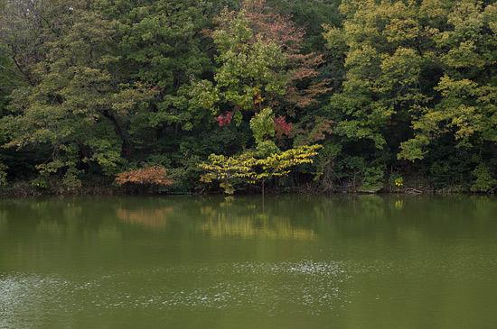 明徳公園-13