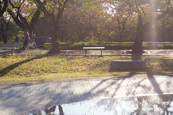 雨池から矢田川-1