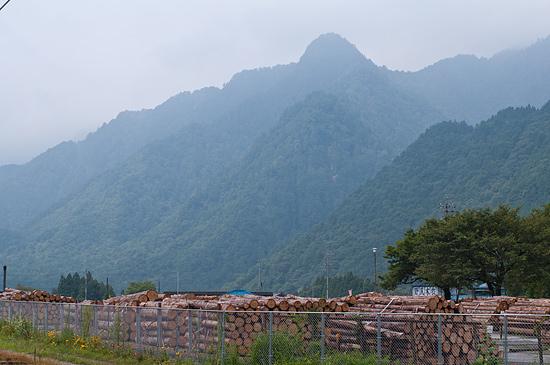 山並みと貯木場