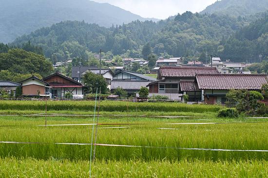 大桑村の風景