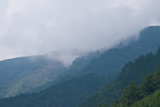 阿寺渓谷土砂降り