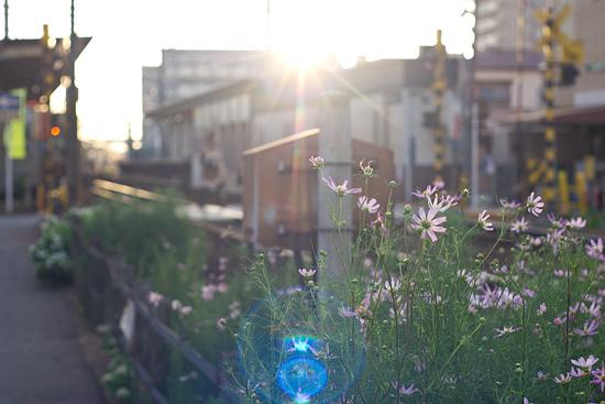 瀬戸電風景-2