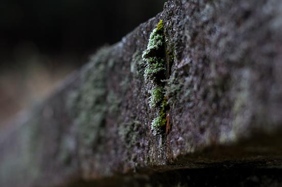 金峯神社-6