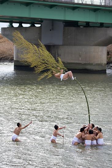 きねこさ祭竹によじ登る