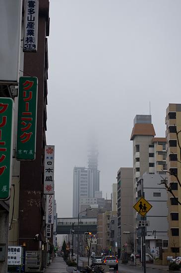 雨の高岳-8