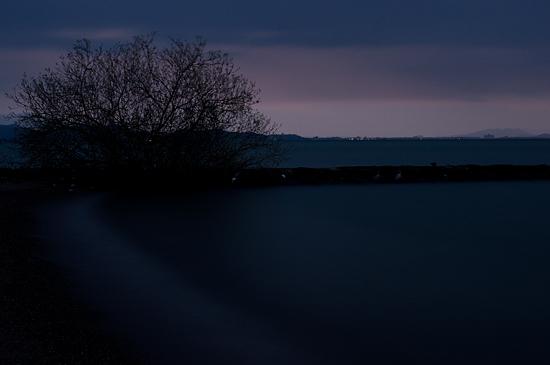 奥琵琶湖2-10