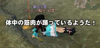 mabinogi-43.jpg