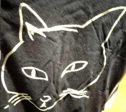 cats_T2.jpg