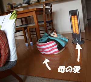 omiarai_090422.jpg