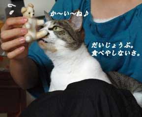 sionmamasan6_090831.jpg