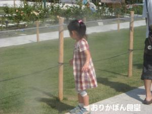 20090913-3.jpg