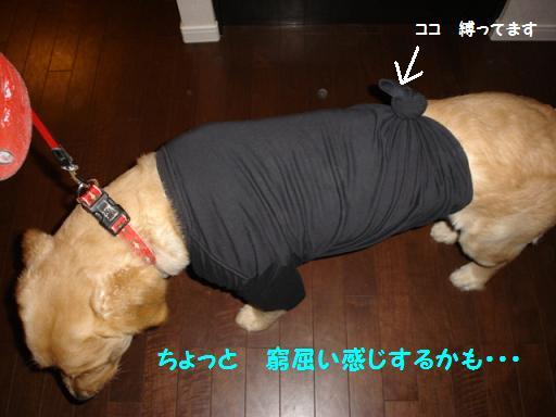 洋服デコ1