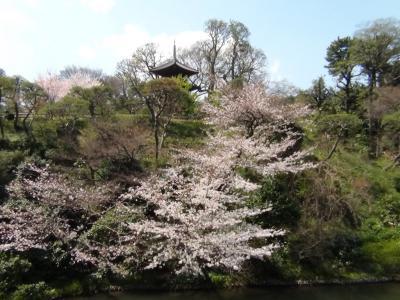 椿山荘庭園①