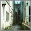 Rollei MiniDigiの世界 gallery LOTTA / galleryB 2006.03.15-04.14