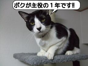 20090103_200516.jpg