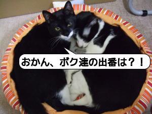 20090109_035917.jpg