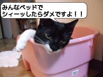 20090113_074905.jpg