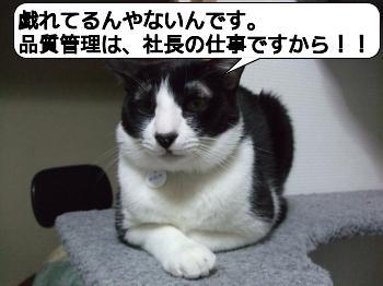 20090328_032108.jpg
