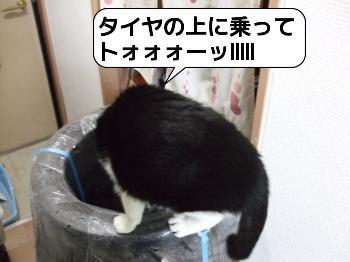 20090409_160015.jpg